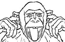 MOMBcast Monkey